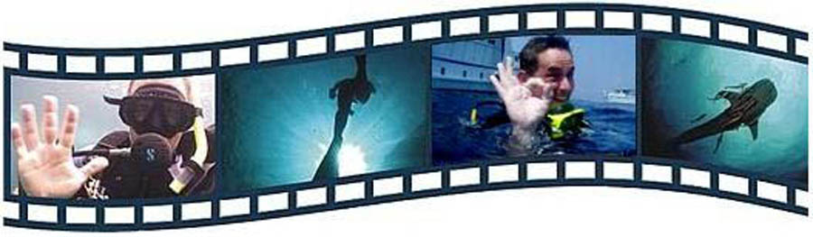 diving-movie